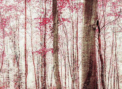 Pink and Brown Fantasy Forest by Brooke T Ryan