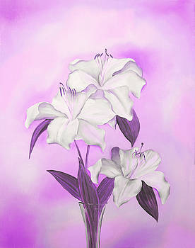 Pink and White by Elizabeth Lock