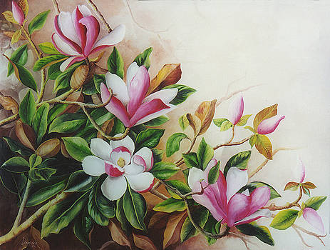 Pink and White Magnolias by Dominica Alcantara