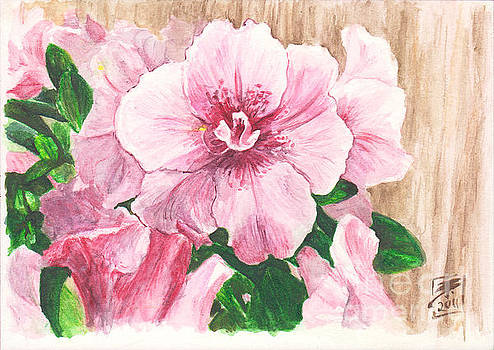 Pink Azaleas by Brandy Woods
