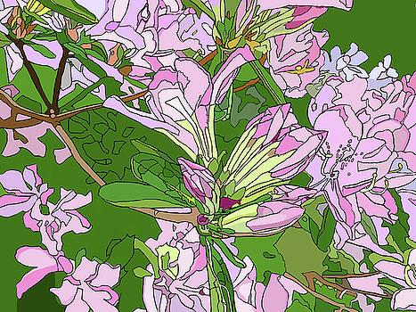 Pink Azaleas by Jamie Downs