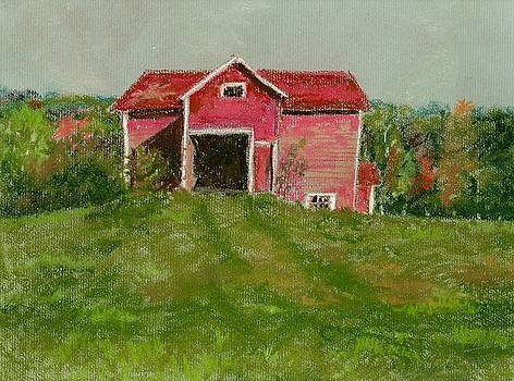 Pink Barn on the Beaverkill River by Ferne McGinnis
