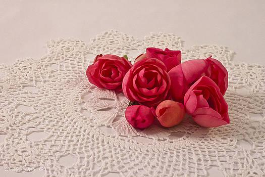 Sandra Foster - Pink Begonia Buds