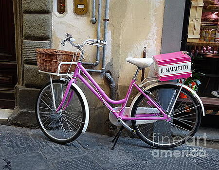 Pink Bicycle by Lainie Wrightson