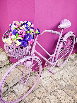 Pink Bicycle by Rae Tucker