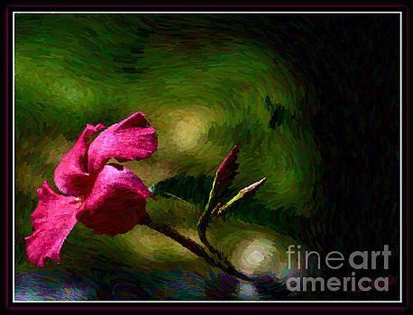 Pink Bud by Leslie Revels