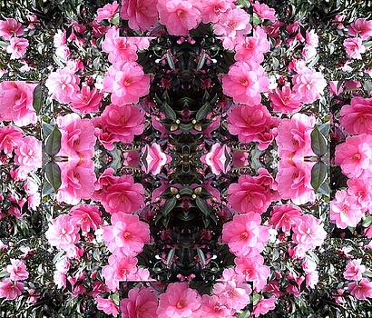Pink Bush Flower Composite by Julia Woodman