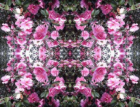 Pink Bush Flower Mandala 1 by Julia Woodman