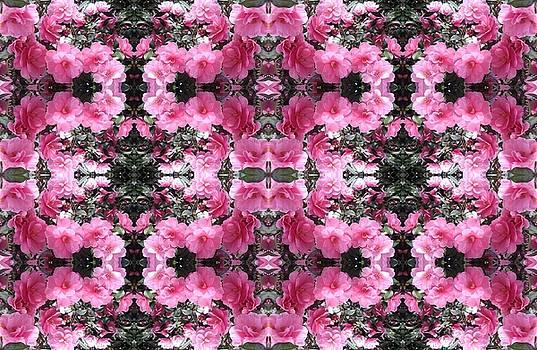 Pink Bush Flower Multi Photo Design by Julia Woodman