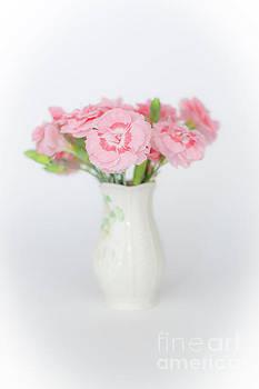 Steve Purnell - Pink Carnations 1