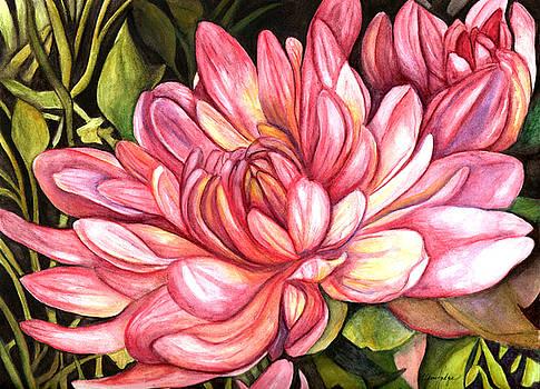 Pink Chrysanthemum by Elaine Hodges