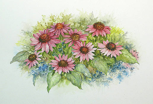 Pink Cone Flowers  by Lois Mountz