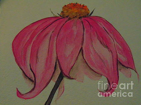 Pink Coneflower by Ginny Youngblood