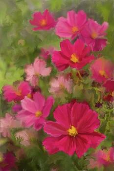 Pink Cosmos Portrait 1 by Karen Forsyth