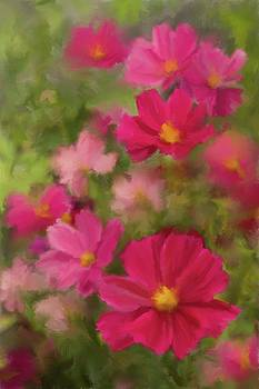 Pink Cosmos Portrait 2 by Karen Forsyth