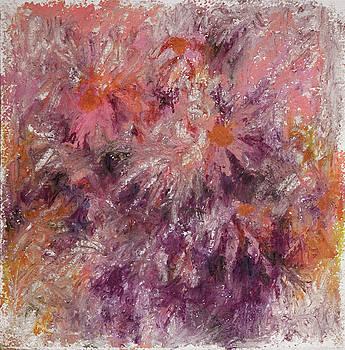 Pink Daisy by Rachel Christine Nowicki