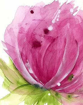 Pink by Dawn Derman