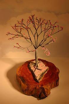 Pink Dogwood Tree by Douglas Kiburz
