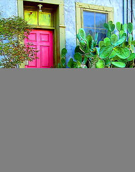 Pink Door and Cactus by Bruce Wood