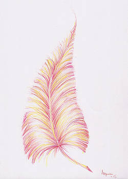 Pink Feather by Stephanie Johnson