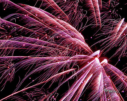 Pink Flamingo Fireworks #0710 by Barbara Tristan