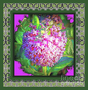 Pink Flower Deco Border by Shirley Moravec