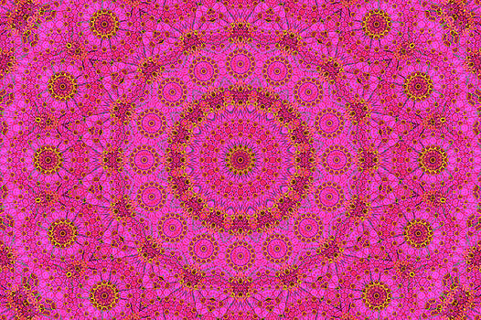 Pink Flower Mandala by Janusian Gallery