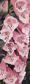 Pink Foxglove by Laurie Rohner