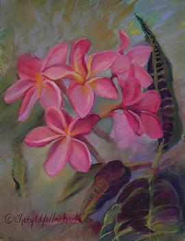 Pink Frangipannies by Cheryl Yellowhawk