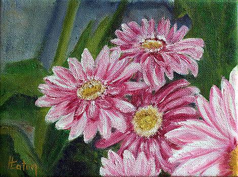 Pink Gerbera Daisies by Helen Eaton