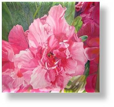 Pink Harmony by Ewald Smykomsky
