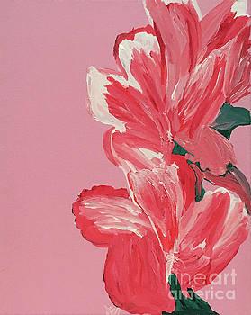Pink Hibiscus Flowers  by Karen Nicholson