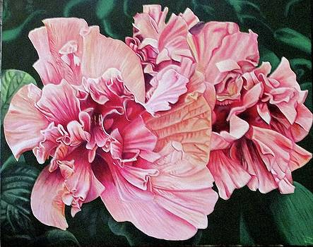 Pink Hybiscus by Suzahn King