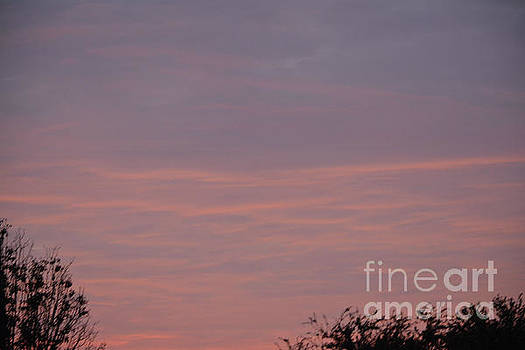 Pink In The Morning Sky by Ruth Housley