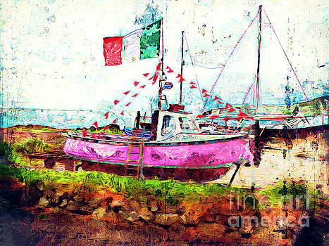 Pink Irish Boat by Claire Bull