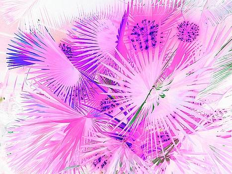 Pink Jungle by Amanda Romer