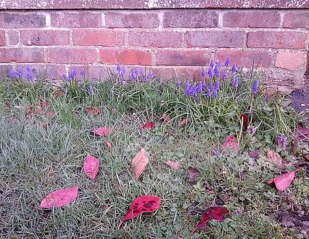 Pink Leaves and Wall with Blue Flowers in Middle by Julia Woodman