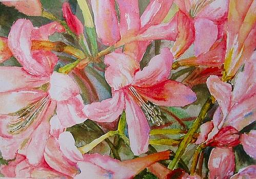 Pink Lilies by Carolyn Bell