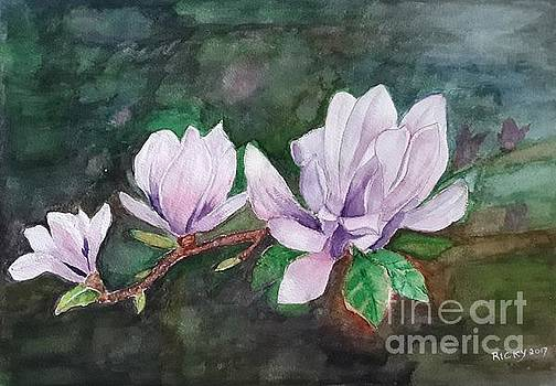Pink Magnolia - painting by Veronica Rickard