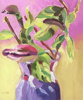 Pink Magnolias  by Tai Yee