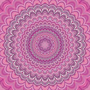 Valdecy RL - Pink Mandala Fractal