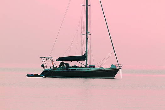 Pink Mediterranean by Richard Patmore
