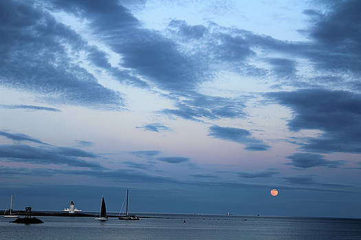 Pink Moon by Stacie Fernandes