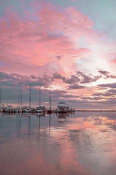 Pink Morning by Leticia Latocki