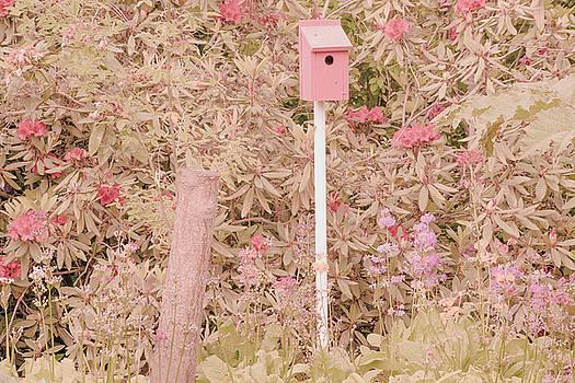 Pink Nesting Box by Bonnie Bruno