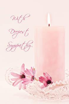 Sandra Foster - Pink Osteospernum Flowers - Sympathy Card