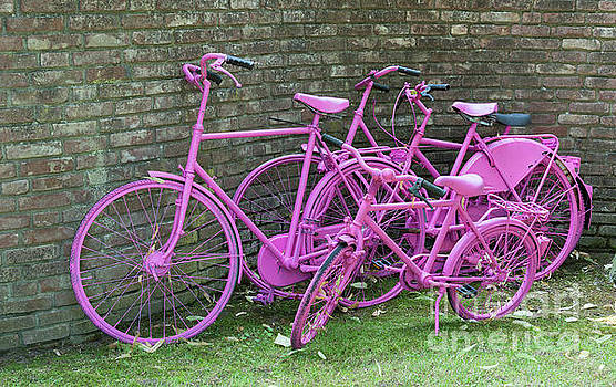 Compuinfoto - pink painted bikes and old wall
