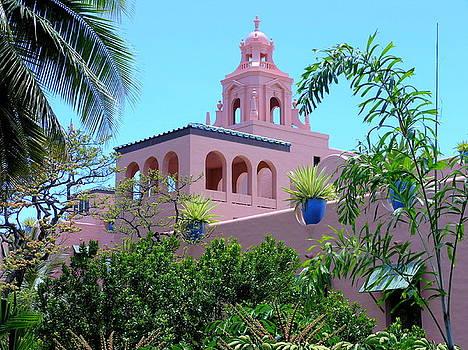 Mary Deal - Pink Palace Honolulu