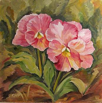 Pink Pansies by Cheryl Pass