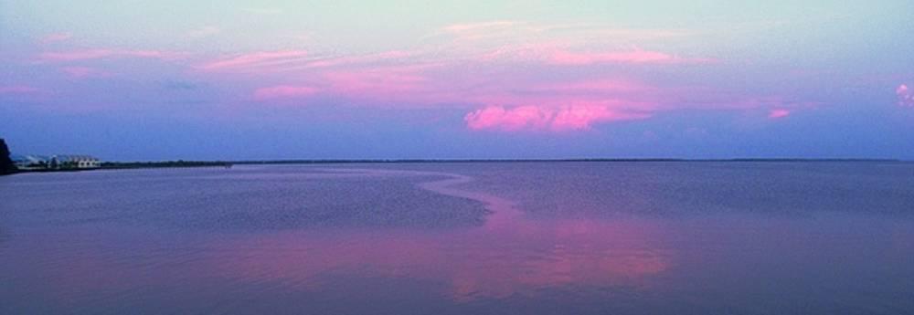 Ian  MacDonald - Pink Path